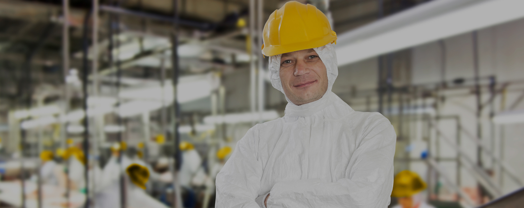 Selecting the Proper PPE for Food Plant Safety