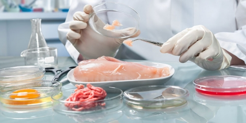Metal Detectable Cleaning Equipment Enhances Meat Processing Safety